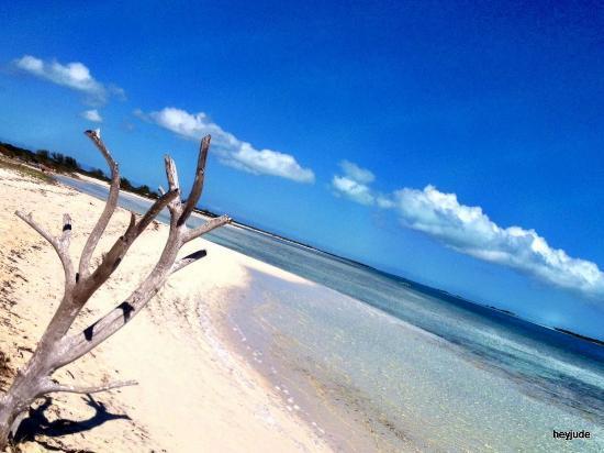 Ocean Club West: the spectacular sea