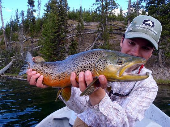 Jackson Hole Anglers: Trophy Trout