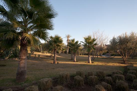 Villa Vanille: Vue du jardin