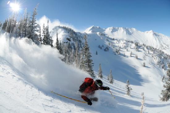 Alta Lodge: Alta Powder 2 - courtesy Nick Rice