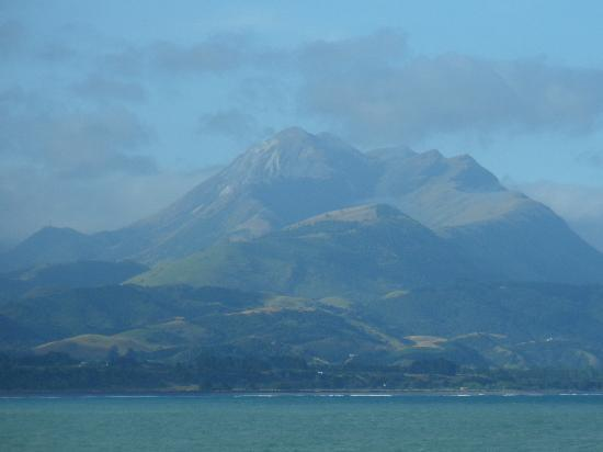 Kaikoura Apartments : yes it is real and a photo