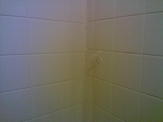 Golden Palms Inn & Suites: more stuff in shower