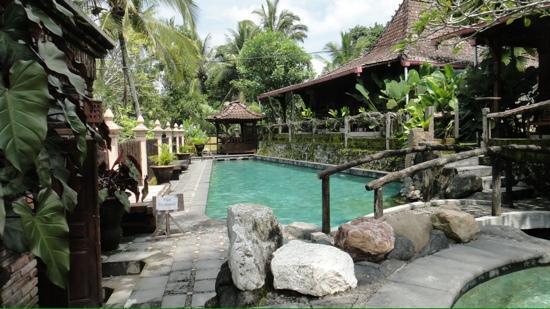Joglo Plawang Boutique Villa: zwembad