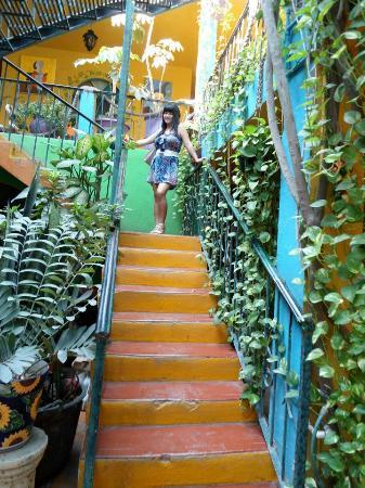 Cabo Inn Hotel: At the stairs