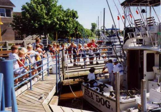 Sea Dog Sportfishing Charters of Sheboygan: Sheboygan boardwalk and charter fishing