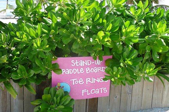 UnderToe Mexico SUP Adventures : UnderToe sign