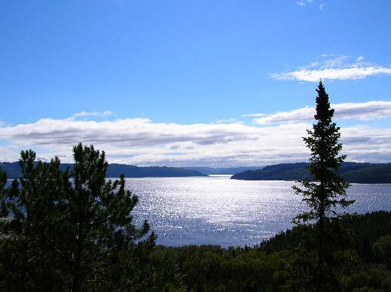 Parc Aventures Cap Jaseux: Des points de vue incroyables sur le Fjord du Saguenay
