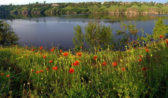 Zaporizhzhya, Ucraina: the beauty of Island's Nature