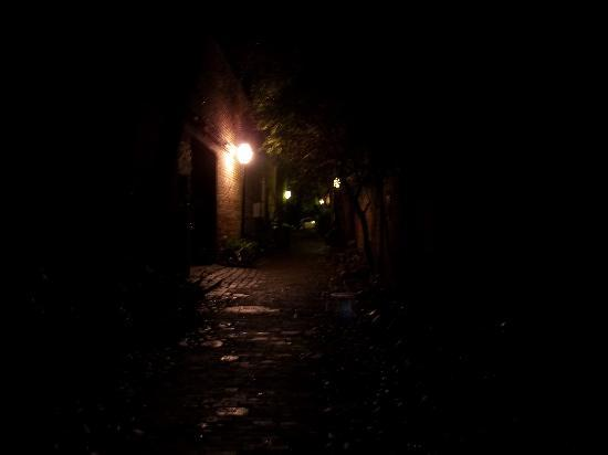 Black Cat Tours : hidden alley