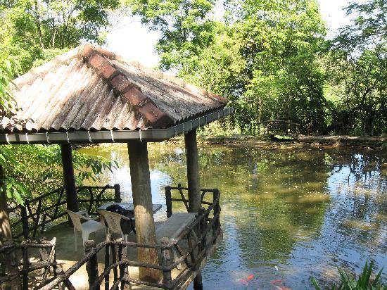 Maskeli Oya Family Park: Pond