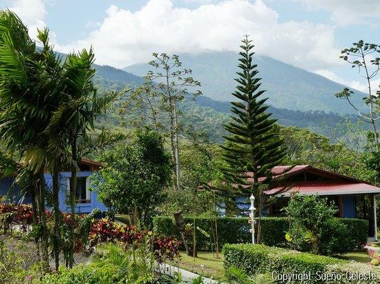 B&B Hotel Sueño Celeste: Green surrounding