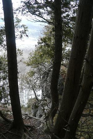 Apple Pie Trail day tours: The view from the top - notice the anchient cedars growing from the cliff (they can be as old as