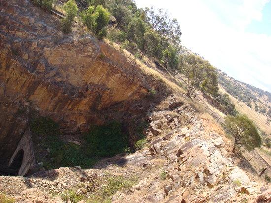 Junee, أستراليا: View 1