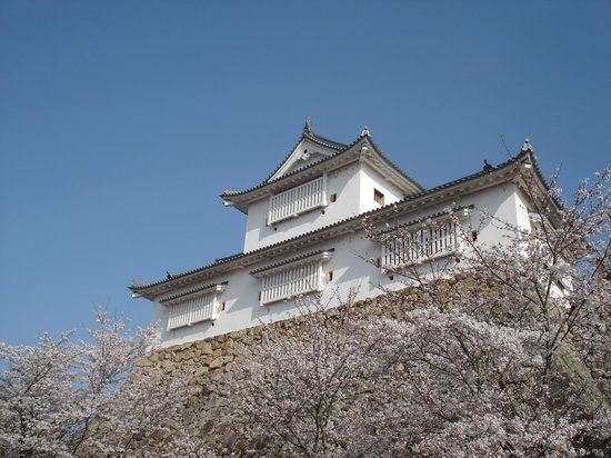 Things To Do in Tsuyama Nature & Mystery Museum, Restaurants in Tsuyama Nature & Mystery Museum