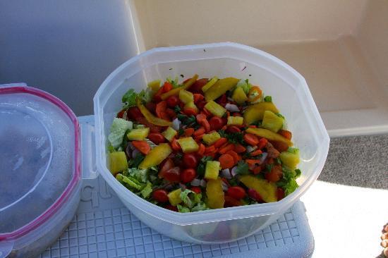 SeaSide Charter N.V.: Fresh Salad for lunch