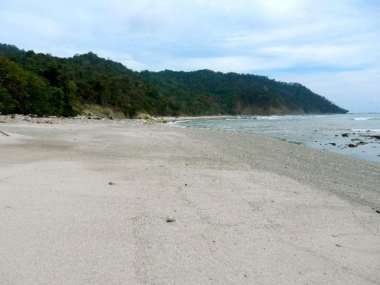 Cabo Blanco Absolute Natural Reserve: beach