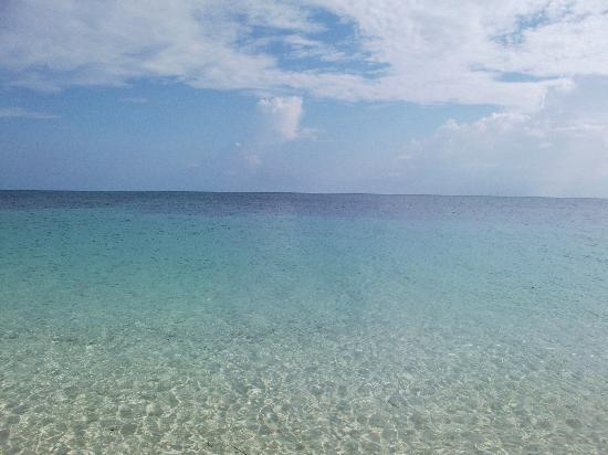 Green Island Resort: グリーン島の浜辺