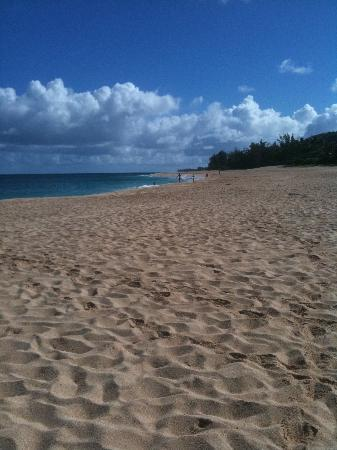 Tropical Waters : Beach in front of the house