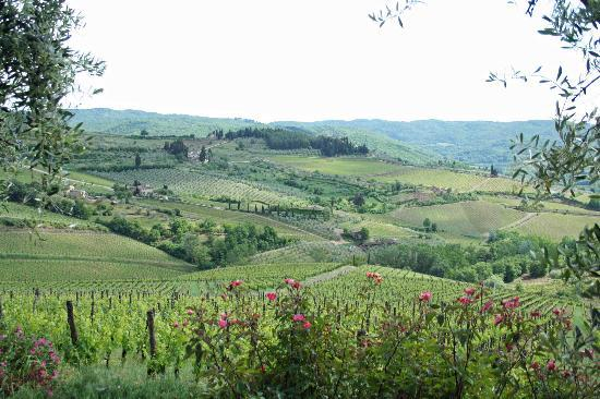 Villa Pecille (Azienda Agricola Fontodi S.S.): Views over the Conca d'Ora from Villa Pecille