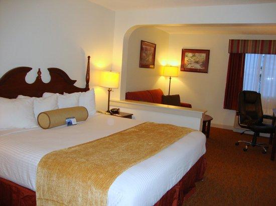 Best Western Plus Cypress Creek : King Suite