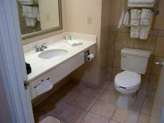 Comfort Suites Deer Park : Everything you need in a bathroom