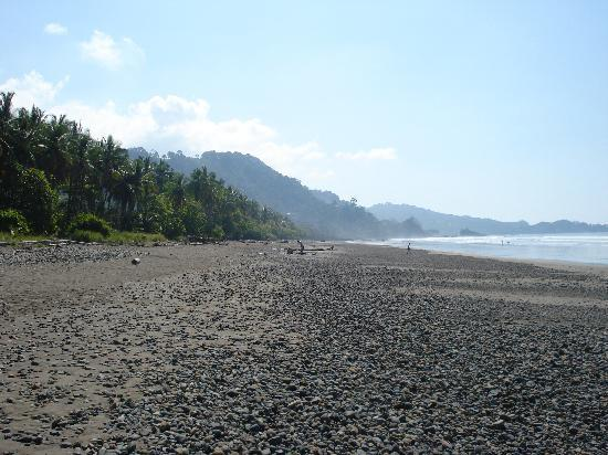 Hotel Domilocos: Beach 50 meter from Domilocos