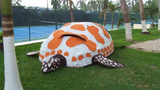 Sunscape Dorado Pacifico Ixtapa: tortuga