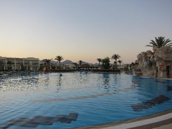 Hilton Sharks Bay Resort: Schwimmbad