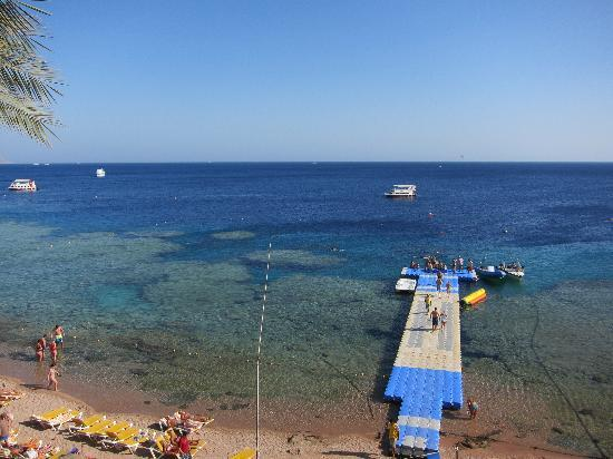 Hilton Sharks Bay Resort: Beach