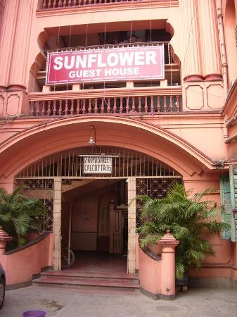 Sunflower Guest House: Street Front