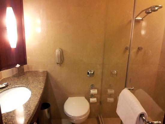 The Gateway Hotel on Residency Road: Bathroom
