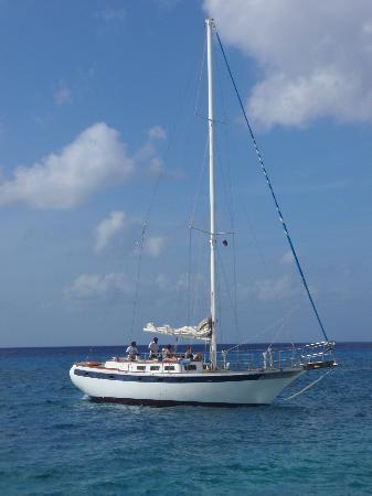 Cozumel Boat Trips: Adelaide