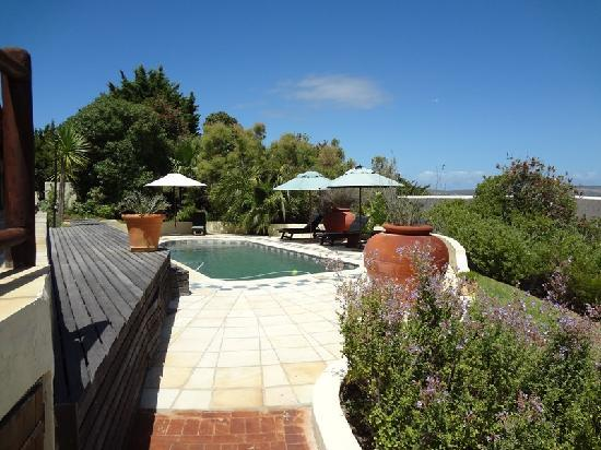 Wild Rose Country Lodge: Swimming Pool
