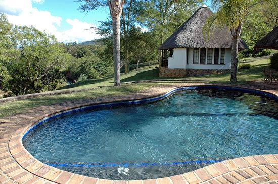 Jackalberry farm lodge bewertungen fotos for Swimming pool preisvergleich