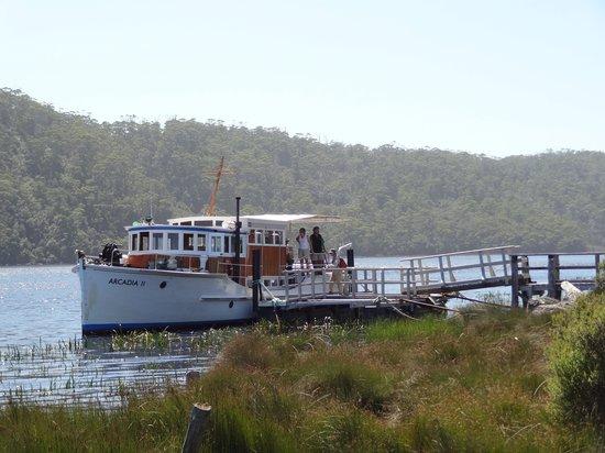 Pieman River Cruise: Arcadia at Corinna