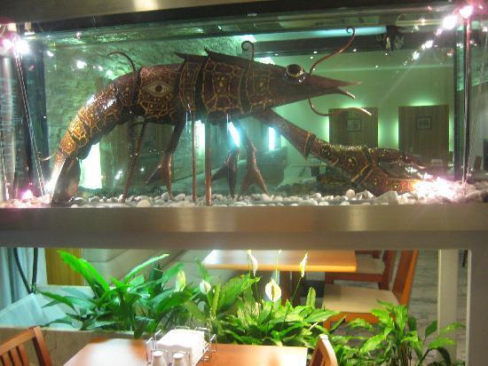 ปาร์คอินน์ พรีบัลติย์สกายา เซนต์ปีเตอร์สเบิร์ก: Aquarium Art - looked unique