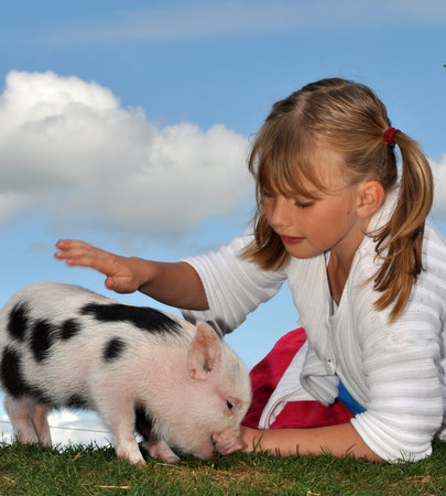 Pennywell Farm: Everybody makes friends at Pennywell