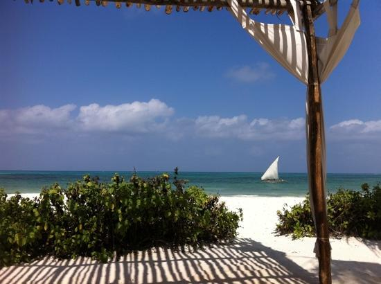 Next Paradise Boutique Resort : View from beds at the beach