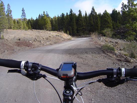 Bike Point El Medano: Bruno