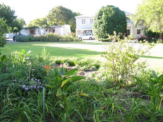Glen Avon Lodge: Garden2