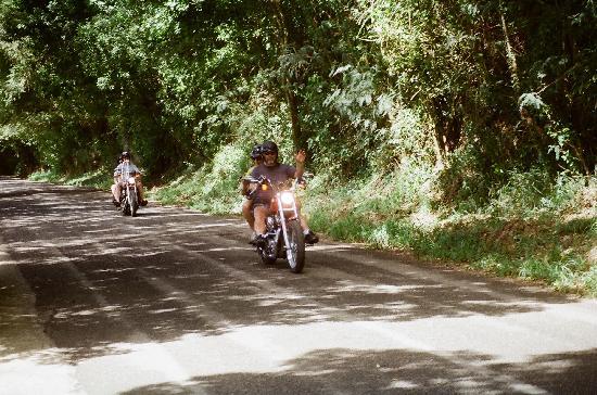 St. Croix Iron Horse Tours: Heading up into Rainforest