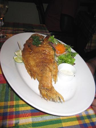 Papa Zouk: Red snapper (Main)