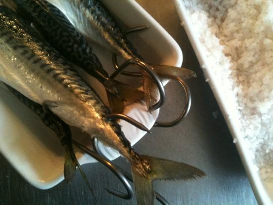 North Wheddon Farm Restaurant: Fresh mackerel ready for the smoker