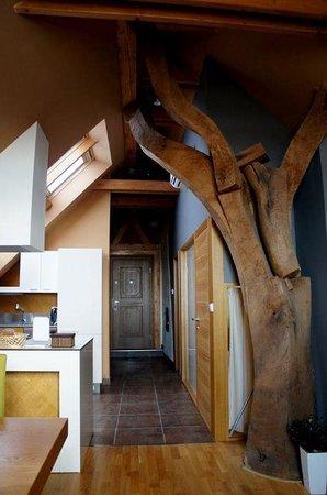 The Chornitzer House: Tree