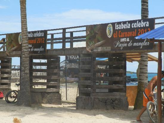 Hotel Albemarle: carnaval en la playa vergonzozo
