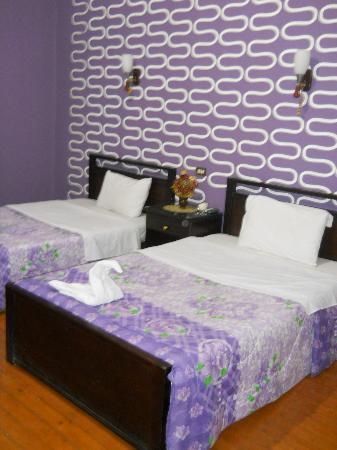 Cairo Paradise Hotel: room