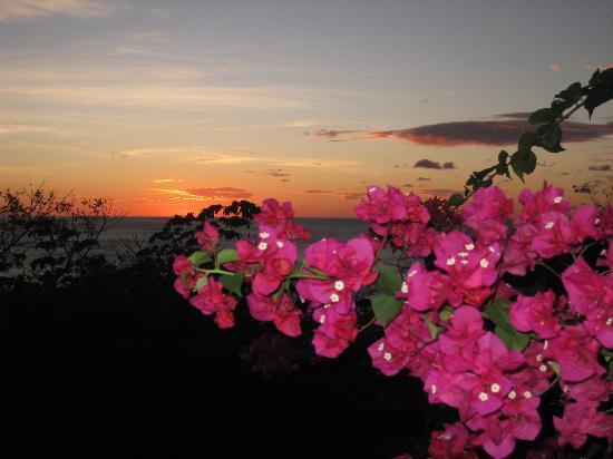 Orquidea del Sur: Magnificent sunsets