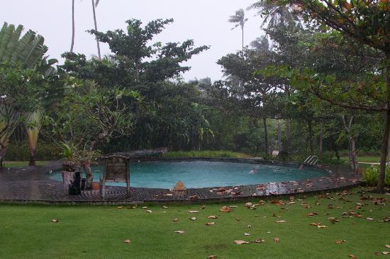 Pulau Joyo: And lovely when it rains