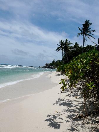 Nikoi Island : la plage