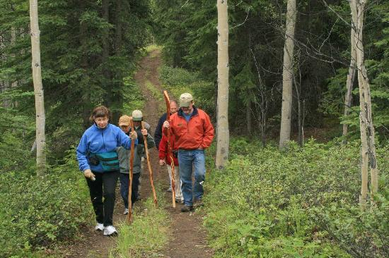 Copper Country Discovery Tour: Listen to stories of the Boreal Forest as you meander down the trail
